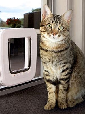 Cat Doors u2013 Sliding & Peninsula Cat Doors - Frankston Cat Doors - 7 Days - 0408 802 139